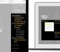 intégration, responsive, formation - Vins de Chablis - 2013
