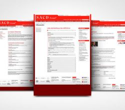 intégration, webdesign - SACD - 2008